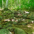 Stone steps built along the trail.- Arethusa Falls
