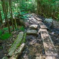 Some trail work prevents your feet from getting too muddy here.- Arethusa Falls