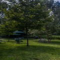 The first picnic area before the beach.- Turtle Beach