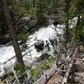 The Torrey Creek torrent echoes through the forest.- Lake Louise Trail