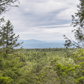A view of the Catskills from the Upper Awosting Carriage Road.- Minnewaska State Park Preserve