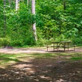 A typical campsite.- Quechee State Park Campground