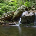 The trail to Margarette Falls is filled with cascades and tranquil pools that are perfect for cooling off on a hot and humid Tennessee day.- Margarette Falls