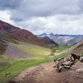 The landscape leading up to Vinicunca is breathtakingly epic, with bright red stones peeking out of mountains.- Vinicunca / Rainbow Mountain
