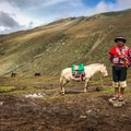 Horses can be hired for about 80 soles to take you up the hillside.- Vinicunca / Rainbow Mountain