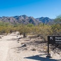 The trailhead for Bajada Nature Trail.- Bajada Nature Trail