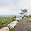 The Hamilton Point Carriage Road along the cliff edge.- Minnewaska State Park Preserve
