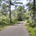 The Millbrook Mountain Carriage Road.- Minnewaska State Park Preserve