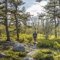 The Jenny Lane Trail.- Minnewaska State Park Preserve