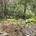 Rainbow Falls splashing on a base of rocks.- Minnewaska State Park Preserve