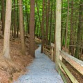 This connector trail leads to the Quechee Gorge Trail.- Quechee State Park