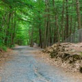 The Quechee Gorge Trail leads down to the river where it exits the gorge.- Quechee State Park