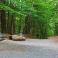 The wide Quechee Gorge Trail can accommodate a lot of visitors.- Quechee State Park
