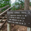 Signs clearly direct hikers along the trail.- Quechee State Park