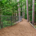 The trail walks along the top of the gorge and leads to picnic tables, a dam, and Dewey's Mill Pond.- Quechee State Park