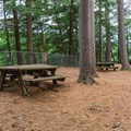 Picnic tables along the Quechee Gorge Trail.- Quechee State Park
