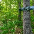 A few signs along the way provide direction and mileage.- Red Hill Fire Tower via Red Hill + Cabin Trails