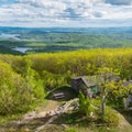 Looking down at Red Hill's summit from the tower.- Red Hill Fire Tower via Red Hill + Cabin Trails