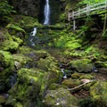 The trail provides a close view of picturesque Dickson Falls.- Dickson Falls Trail