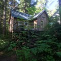 Cabin 1 surrounded by the forest.- Jawbone Flats