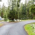 Indian Creek loop road.- Indian Creek Campground