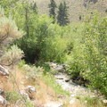The trail follows the creek for some of the way.- Gold Bug Hot Springs