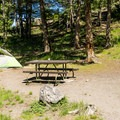 Campsite at Tower Fall.- Tower Fall Campground