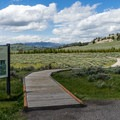 The boardwalk is accessible.- Forces of the Northern Range Trail