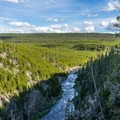 Gibbon River.- Gibbon Falls