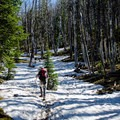 Snow can linger on the trail well into July.- Avalanche Peak