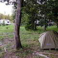 There are several wooded sites.- Bridge Bay Campground