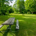 The picnic area has three tables and one raised grill.- Zealand Campground and Picnic Area