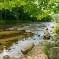 Access along the Ammonoosuc River from some of the campsites.- Zealand Campground and Picnic Area