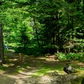 Though near the highway, site 10 offers some more secluded camping versus some of the other sites.- Zealand Campground and Picnic Area