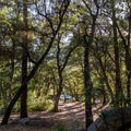 Parking is near a few beautiful walk-in tent camping sites.- General Hitchcock Campground