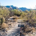 Lots of trails to explore nearby.- Bear Canyon to Seven Falls Trail