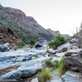 You'll cross the wash several times throughout the hike.- Bear Canyon to Seven Falls Trail