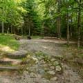 A typical campsite in Sugarloaf 1 Campground.- Sugarloaf 1 Campground