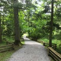 Pathway to English Camp.- San Juan Island National Historical Park
