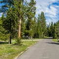 The campground as viewed from the road.- Baker's Hole Campground