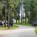 Baker's Hole Campground.- Baker's Hole Campground