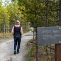 Near the trailhead of the Artist Paintpots Trail.- Artist Paintpots Hike