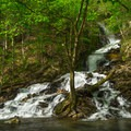 Agawamuck Falls flows from the hillside just downstream from High Falls.- High Falls Conservation Area