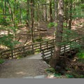 Bridge near the start of the trail. A small stream runs under the bridge and joins the Agawamuck Creek.- High Falls Conservation Area