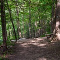 Approaching the overlook on the upper trail.- High Falls Conservation Area