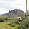 The desert expanse and Flatiron Peak in Lost Dutchman State Park.- Lost Dutchman State Park