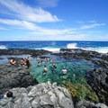 The tide pools offer a refreshing break from the heat.- Makapu'u Tide Pools