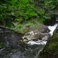 A dam further downstream from the main waterfall.- High Falls Conservation Area
