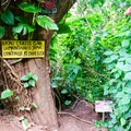Contradictory signage at the trailhead.- Ka'au Crater Hike