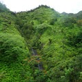Looking toward the third falls coming from the crater rim.- Ka'au Crater Hike